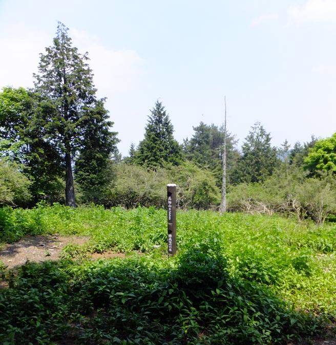 3-高畑山