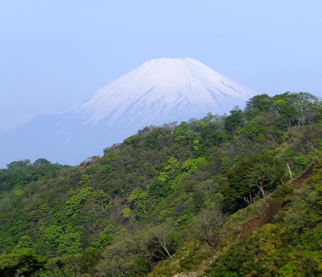 21-1大倉尾根と富士山