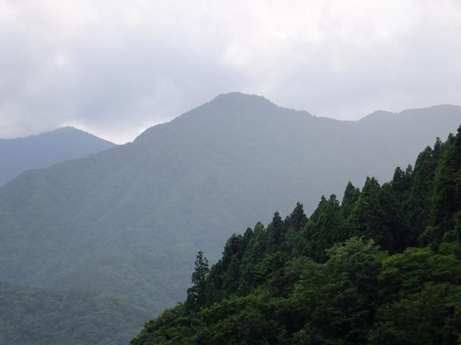 17-榛の木遠望
