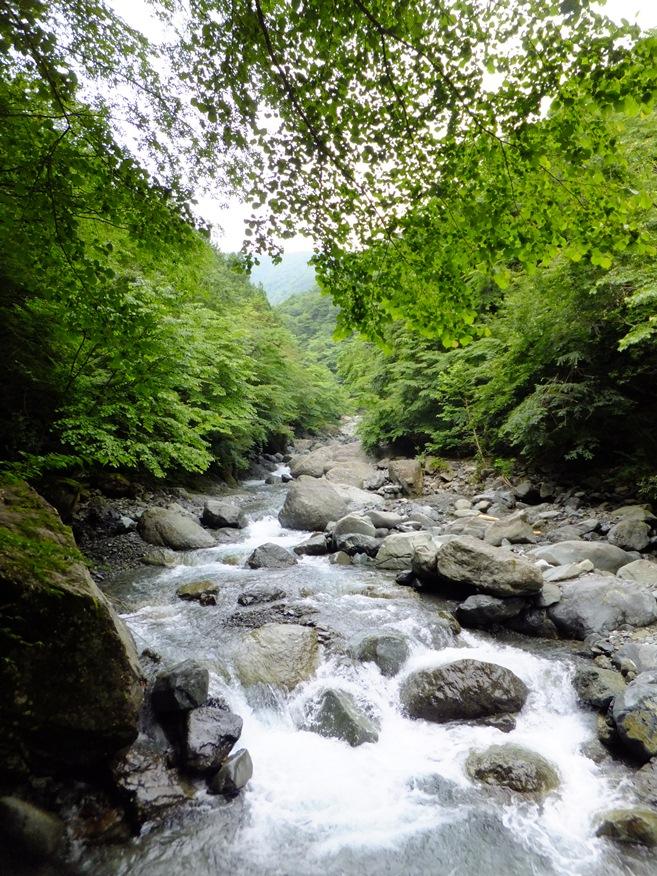 3-早戸川