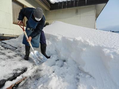 平成24年 1月19日  大潟村雪景色 005
