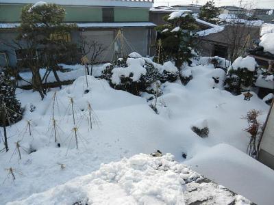 平成24年 1月19日  大潟村雪景色 008