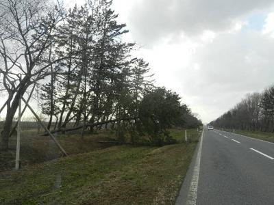 暴風被害 (3)