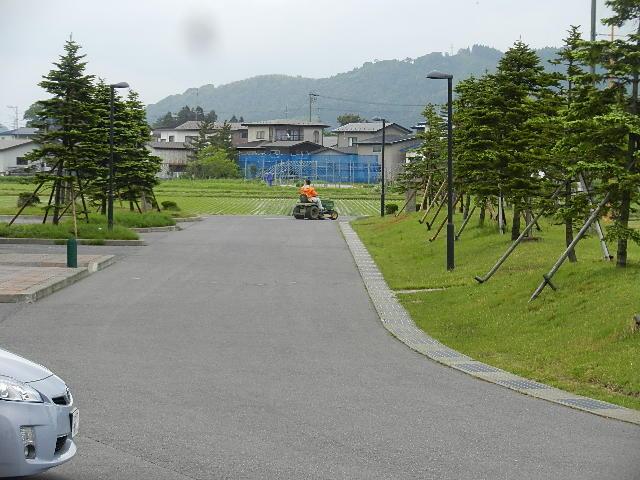 芝刈り 006