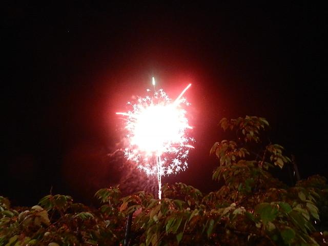 一夜市2012 298
