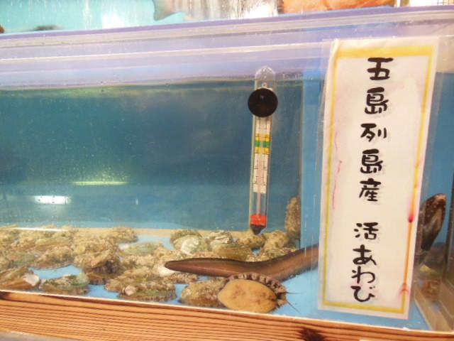 石井HIROO 074