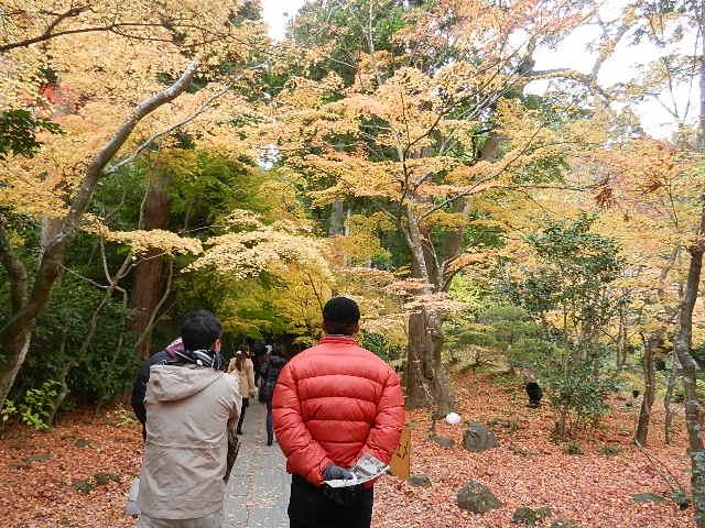 南三陸メビウス旅行 仙台・ 206