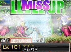 Maple101231_203843.jpg
