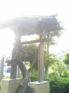 ykchourinji1106111.jpg