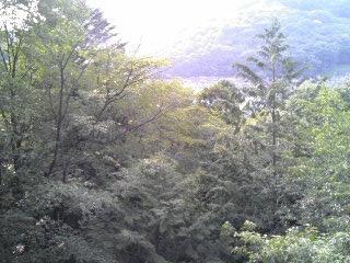 ykchourinji11061111.jpg
