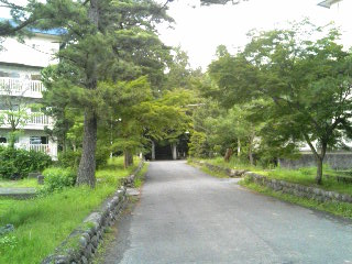 ykchourinji11061118.jpg