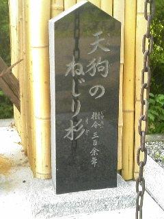 ykchourinji1106112.jpg