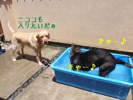 2010_0616_123606-P6160681.jpg