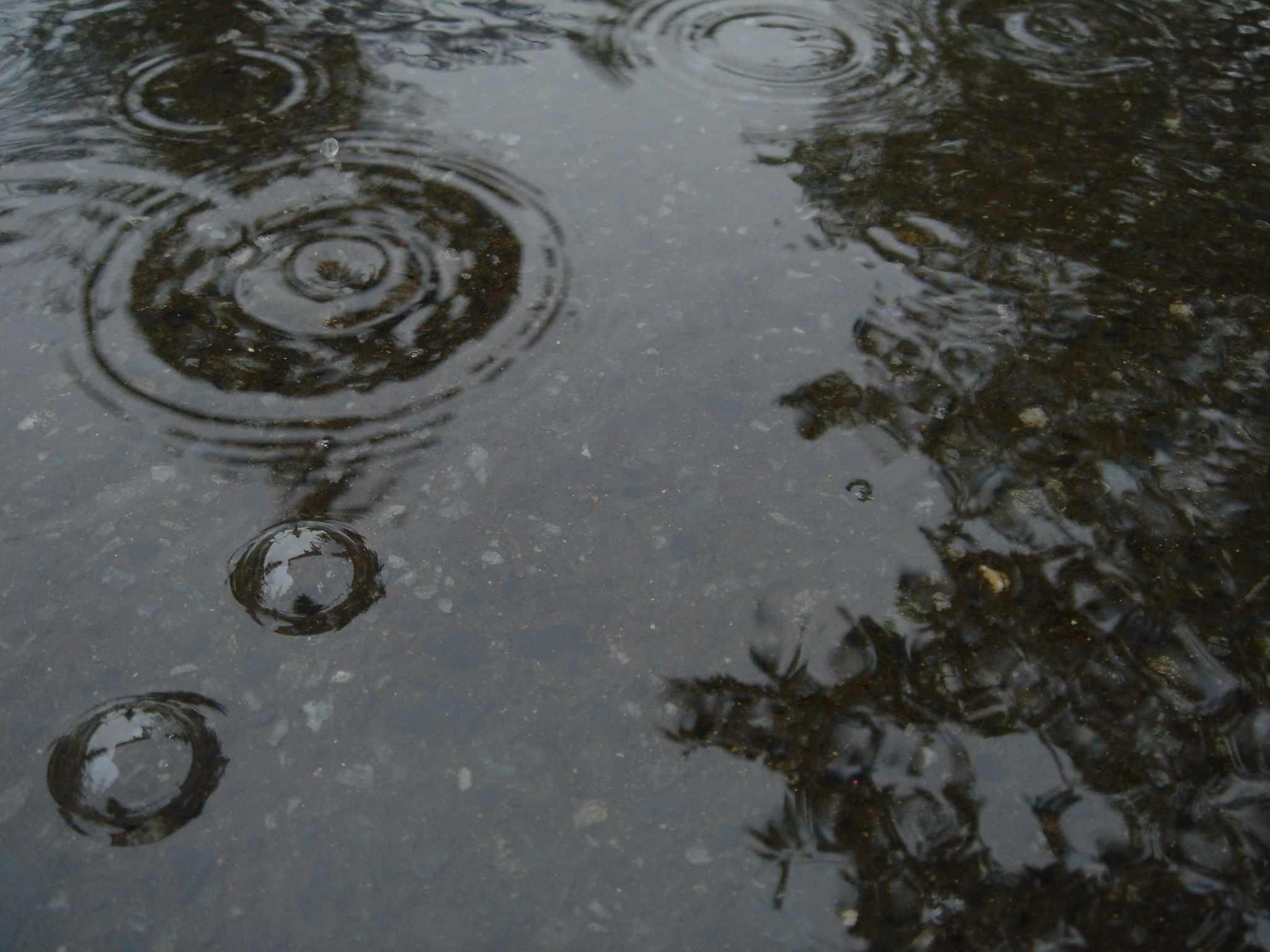 雨の日が楽しくなる♩ハッピー度をあげる靴まとめ