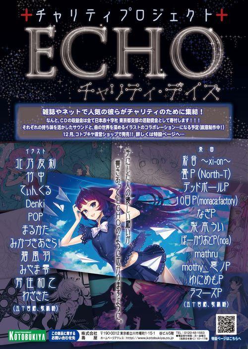 echo_fix.jpg