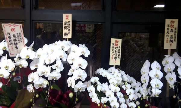 20110110  to 浅香光代 from 亀井静香 町村 森元 武部