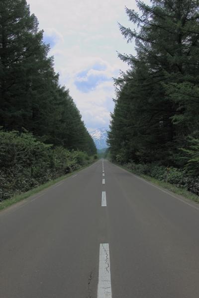 北海道 65