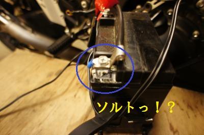 DSC06850_convert_20120514195620.jpg