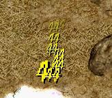12_20100808010559.jpg
