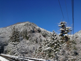 Okutama Shuyu Road 1