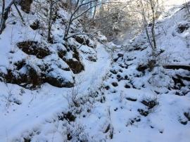 Trail 03