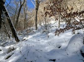 Trail 05