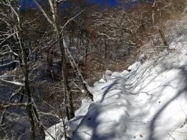 Trail 07