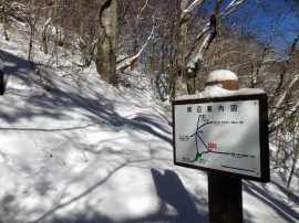 Trail 12