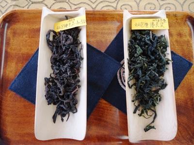 台湾茶講座3回目 受賞茶