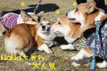 NaNaちゃん大人気☆