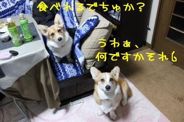 何それ・・・・