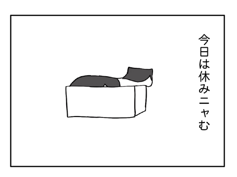 2011 03 01