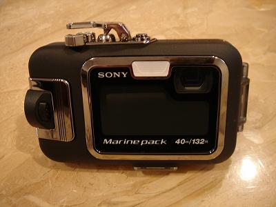 s-20071981.jpg