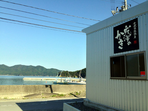 石巻市雄勝町 水浜地区 「成澤のかき」看板 (2013年9月,遠藤夕幻・撮影