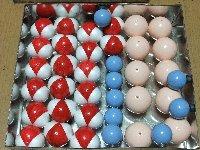 磁石つき分子模型(食塩水)
