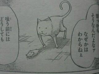 猫だな・・