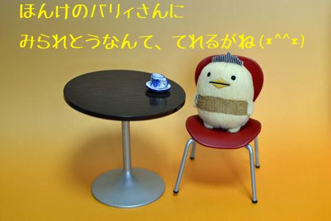 DSC_j.jpg