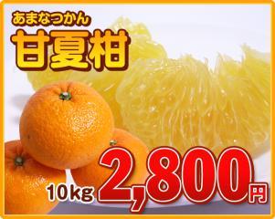 amanatsukan_02.jpg