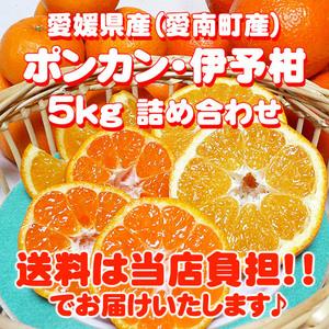 kankitsu0013_01.jpg