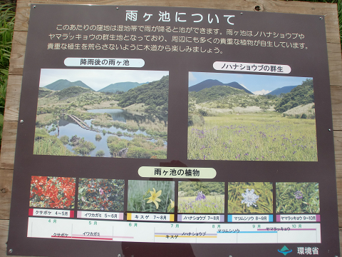 指山コース (14)