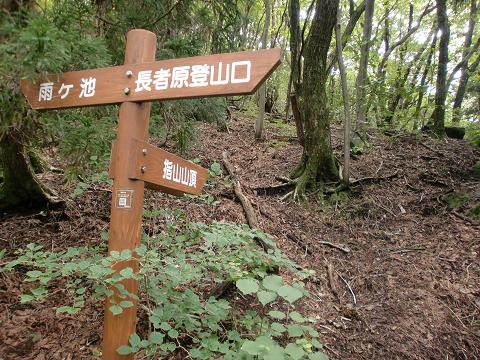 指山コース (24)
