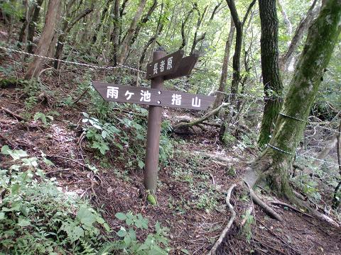 指山コース (23)