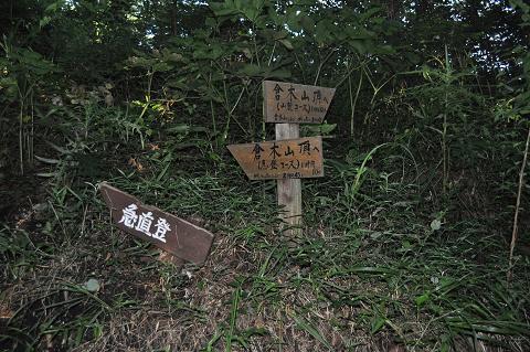11.8.12倉木山 (2)s