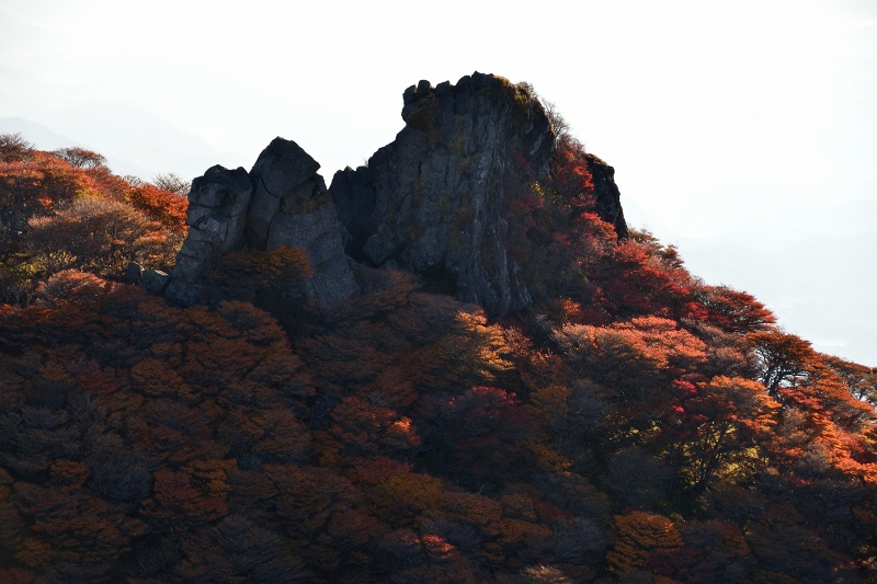 大船山 (26)