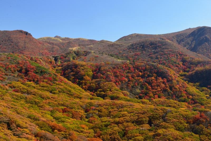 141025沓掛山 (6)