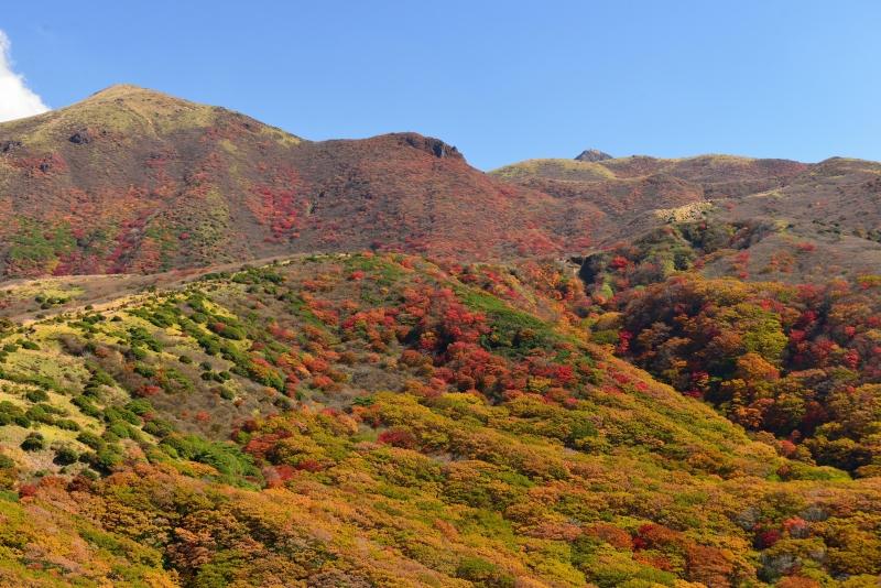 141025沓掛山 (5)