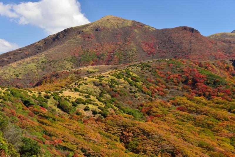 141025沓掛山 (4)