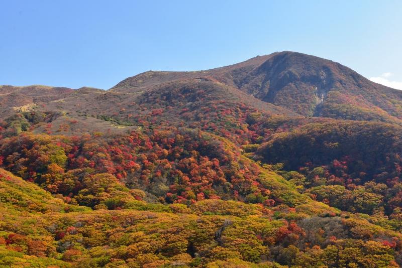 141025沓掛山 (3)