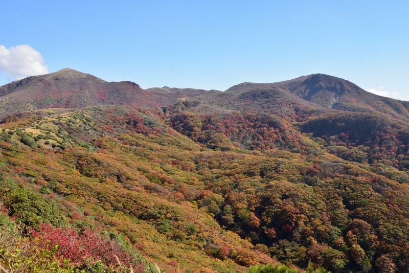 141025沓掛山 (2)