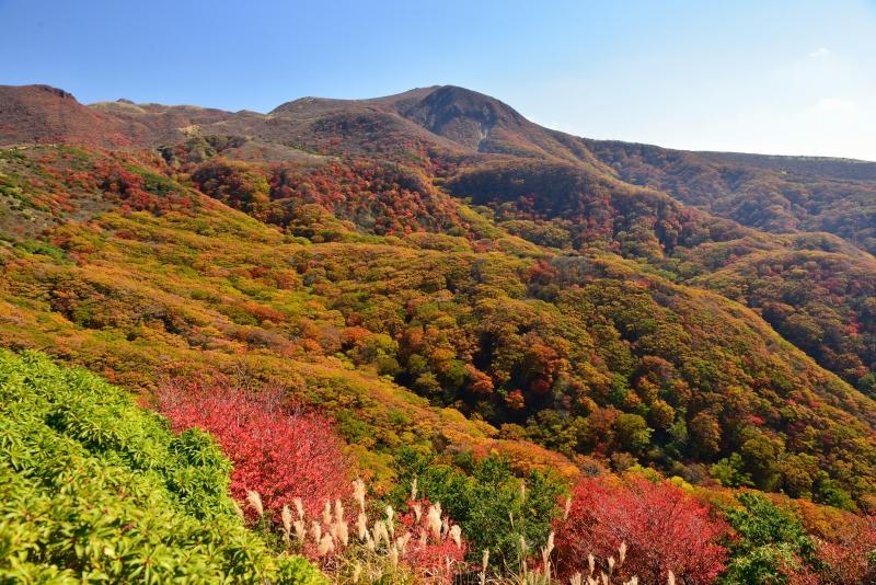 141025沓掛山 (9)